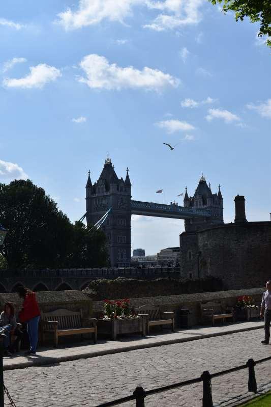 London2019a (68)-min