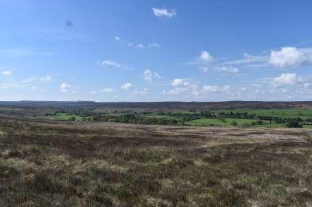 North Moors (8)-min
