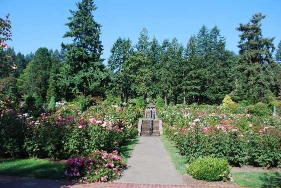 Oregon_0125-min