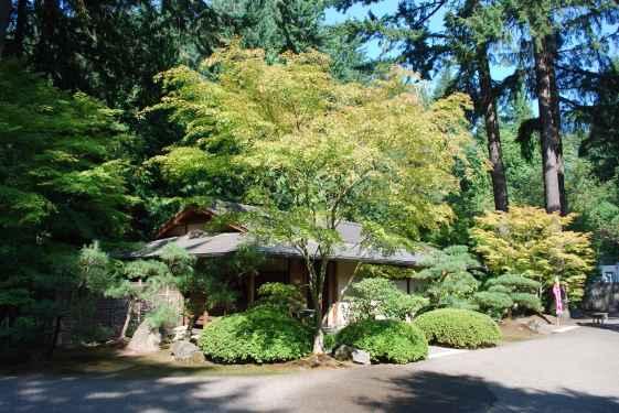 Oregon_0133-min