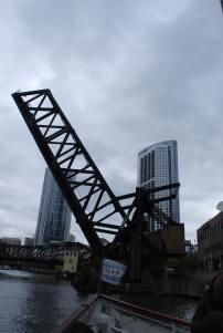 Chicago15.5 (16)