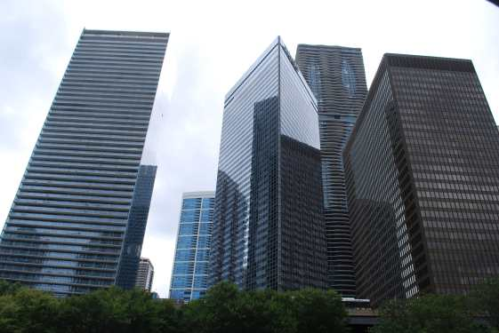 Chicago15.5 (6)