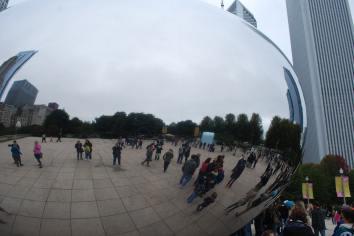 Chicago15.6 (3)